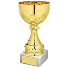 GOLD PRESENTATION CUP 1051-TWT