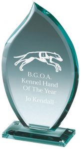 Premium Jade Glass Award T.0411-TWT