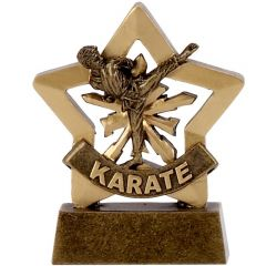 Mini Star Karate Trophy A1111-GW