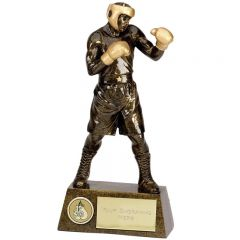Pinnacle Boxing Trophy A1249-GW