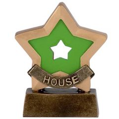 Mini Star House Colours Trophy A951C-GW