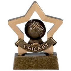 Mini Star Cricket Trophy A969-GW