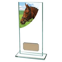 COLOUR CURVE EQUESTRIAN AWARD CR4637-TSA