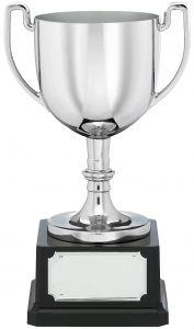Silver Presentation Cup H204A-GWT