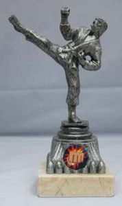 MARTIAL ARTS TROPHY 196D-TWT