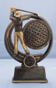 CRICKET TWENTY 20 TROPHY A1006B-GW