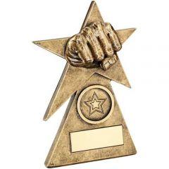Martial Arts Diamond Series Trophy RF237-TD