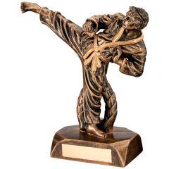 Karate Figure Trophy RF30-TD