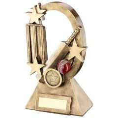 Bronze/Gold Stat Cricket Trophy RF736-TD
